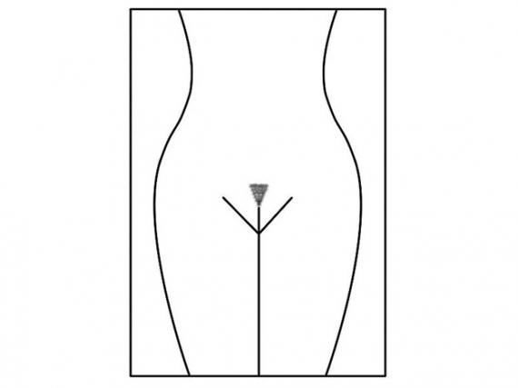 suchka-bikini